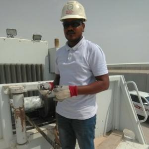 Work Team 11